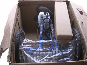 adult three wheel bicycle in shipping package