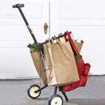 Hook & Go Folding Shopping Cart BC510