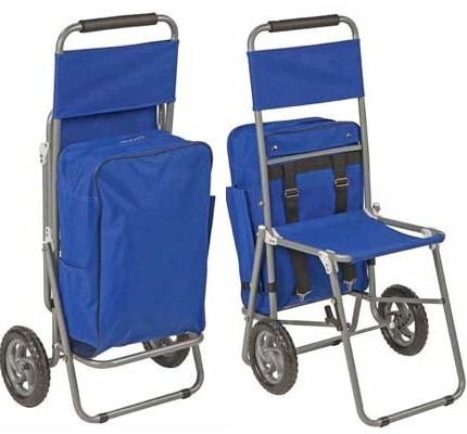 Rolling Shopping Cart with Seat