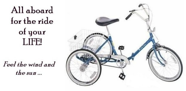 Three Wheel Bicycle Wm1001
